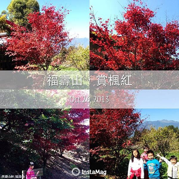 No 3 福壽山 (51).JPG