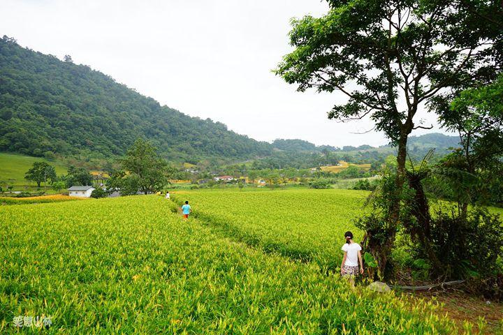 笑傲山林第52露 赤柯山_汪家古厝 (66).jpg