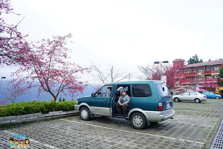 合歡山迎接霸王寒流 (10).JPG