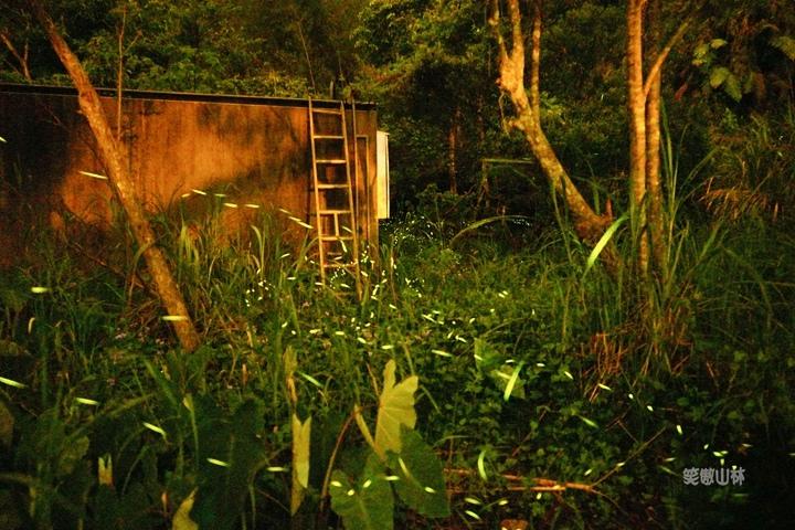 105-04-27 與東森幼幼台一起露營去 不遠山莊 (152).jpg