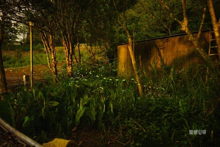 105-04-27 與東森幼幼台一起露營去 不遠山莊 (154).jpg