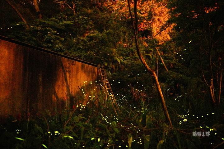105-04-27 與東森幼幼台一起露營去 不遠山莊 (157).jpg