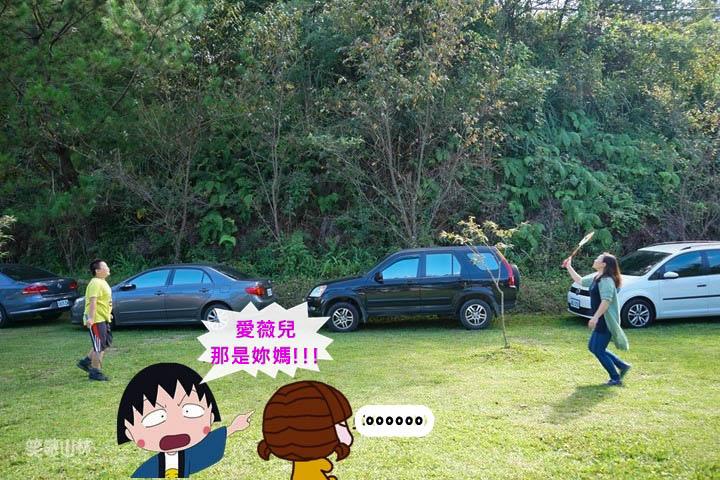 DSC00375_副本.jpg