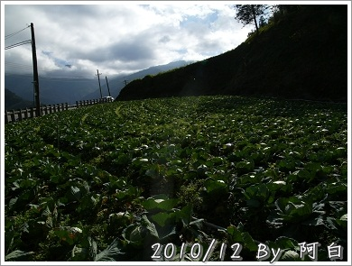 P1150165.jpg