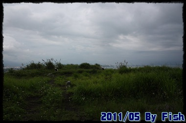 IMG_1398.jpg