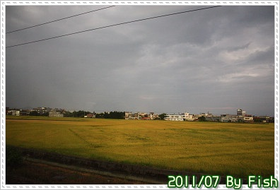 IMG_2716.jpg