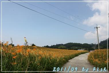 IMG_3731.jpg