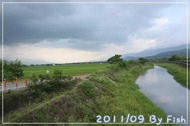 IMG_4646.jpg