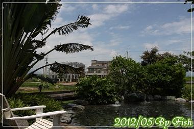 IMG_9649