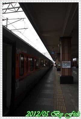 IMG_9207