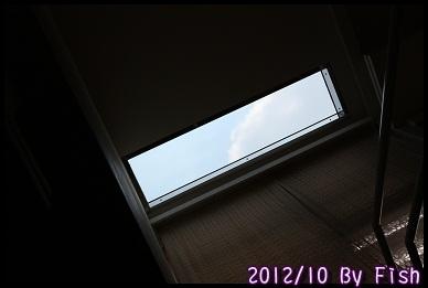 IMG_9247