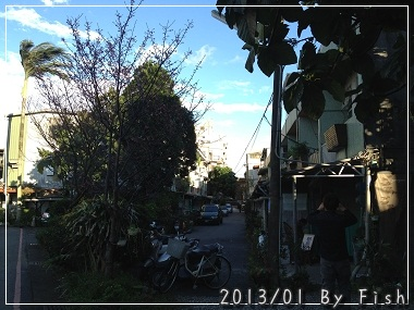 IMG_4911