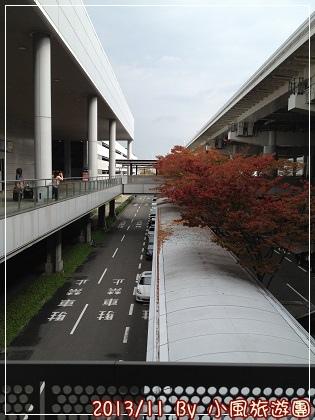 IMG_1210.jpg