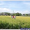 IMG_8348.jpg