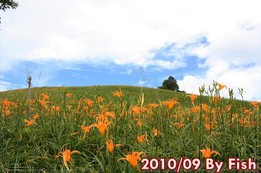 IMG_6059.jpg