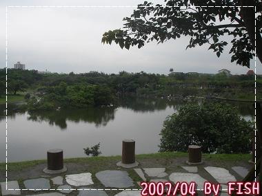 DSC01796.jpg