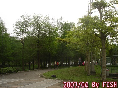 DSC01800.jpg