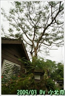 2009_03_28~29_花蓮【住海邊】民宿_096.jpg