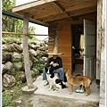 2009_03_28~29_花蓮【住海邊】民宿_157.jpg