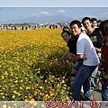 2008_11_22~23_研究所班遊(新社花海˙溪頭)_052.jpg
