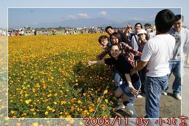 2008_11_22~23_研究所班遊(新社花海˙溪頭)_056.jpg