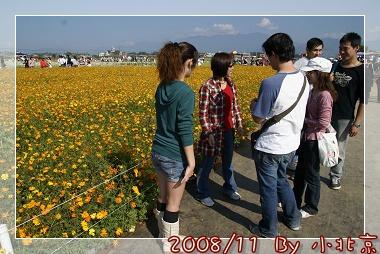 2008_11_22~23_研究所班遊(新社花海˙溪頭)_058.jpg