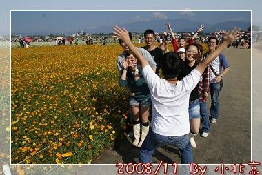 2008_11_22~23_研究所班遊(新社花海˙溪頭)_067.jpg