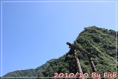 IMG_6560.jpg