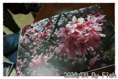 IMG_9585.jpg