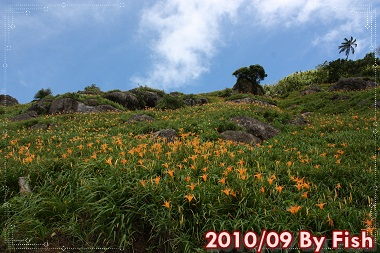 IMG_6091.jpg