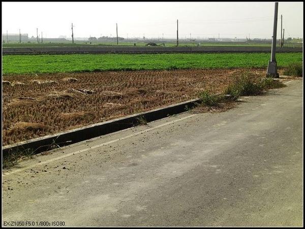 東西向農地-1.jpg