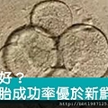 凍胚v.s鮮胚哪個成功率高