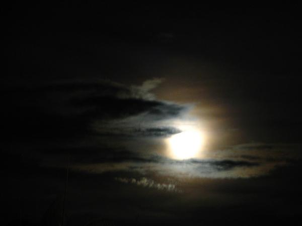簽書會那天晚上的月空