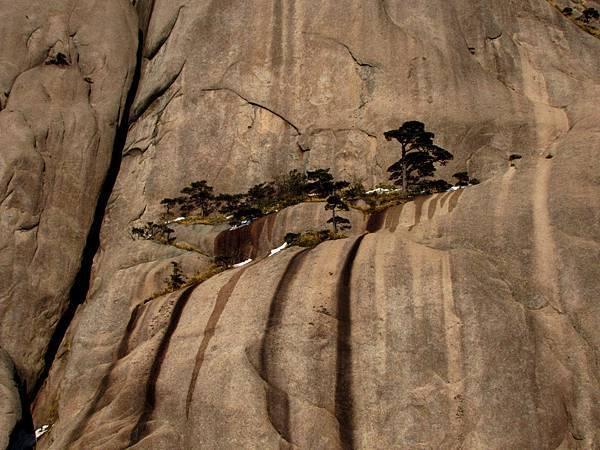 黃山,石中畫
