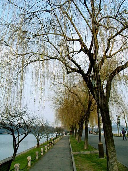 西湖,蘇堤