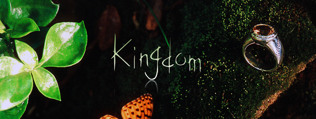 1010_380-top_kingdom