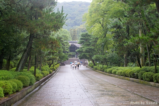 D3-4 清水寺→圓山公園 (80).jpg