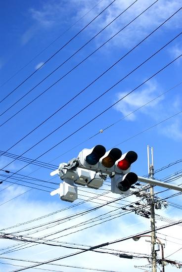 D2-2 日本巴士 (8).jpg