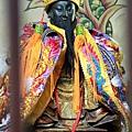 台東卑南南清宮保生大帝聖像