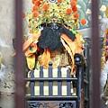 台東卑南南清宮池府千歲聖像