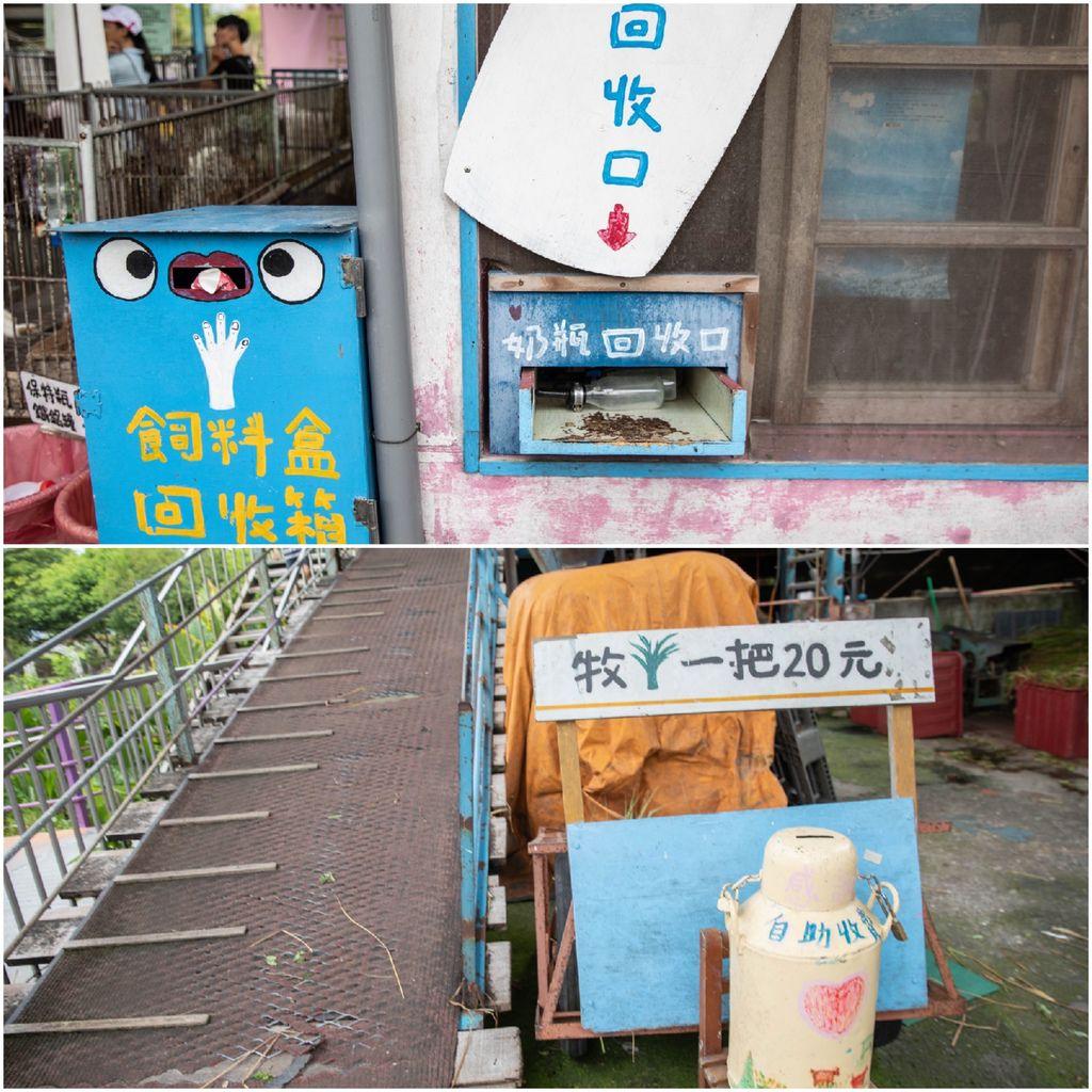 Collage_Fotor16.jpg