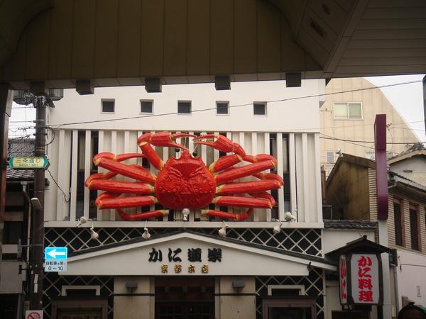 我在京都的好朋友