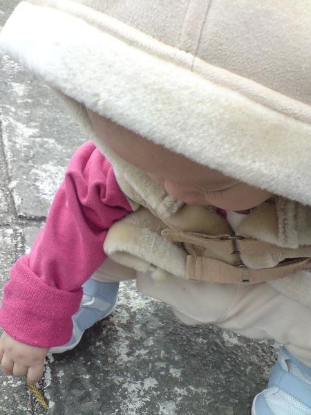 小愛斯基摩人玩地板