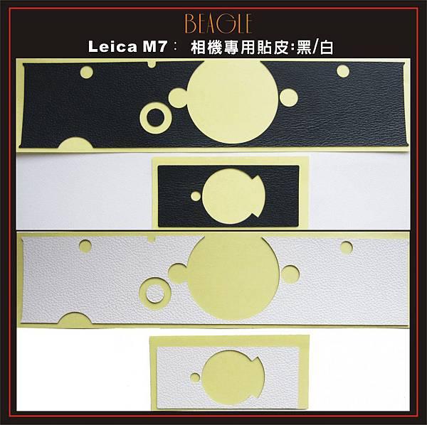 DM-M7-1.jpg