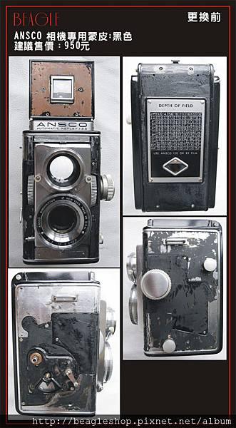 DM-ansco-1.jpg