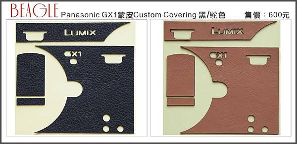 DM-GX1-1