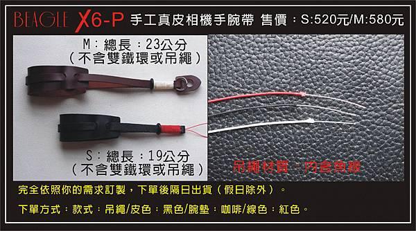 DM-X6-P-2