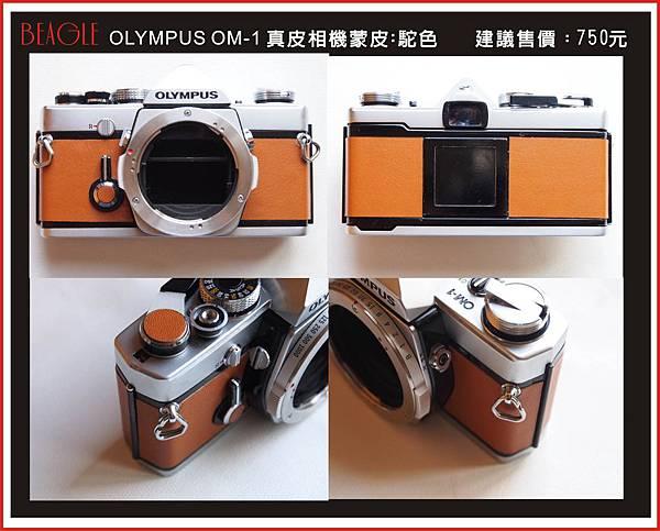 DM-OM1-1