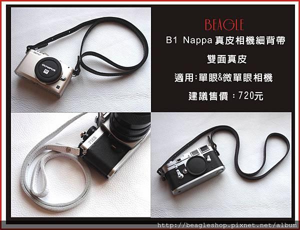 DM-B1-1