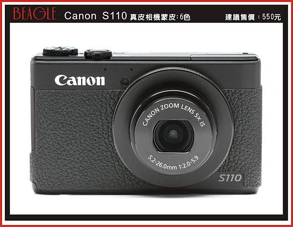 DM-S110